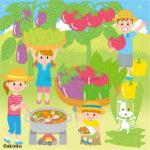 7月 夏野菜のイラスト
